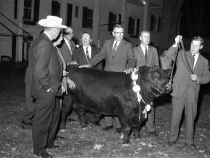 Beekman Arms Hotel Black Angus Exhibition Rhinebeck 1961 (5)