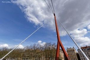 Les cables de la Passerelle du Palais