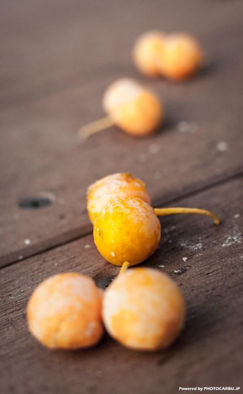 秋の風物 - 銀杏 Ginkgo