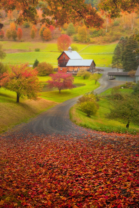 Vermont Wallpaper Fall Photo Cascadia Blog Showcasing Some Of The Most Talented