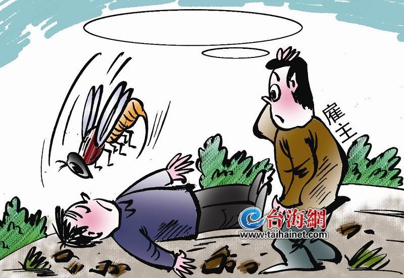 蜜蜂蜇死人 應該找誰賠?(圖)-搜狐滾動
