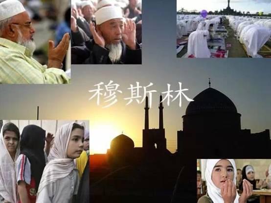 """【揭秘伊利】清真好奶還得""""穆斯林""""認證-搜狐新聞"""