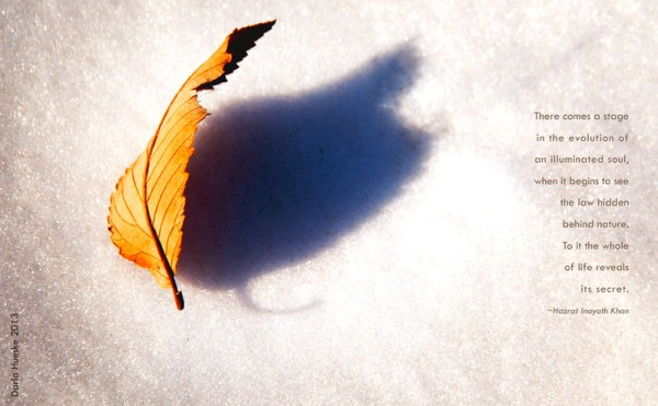 Light and Shadow: One cannot exist without the Other by Darla Hueske
