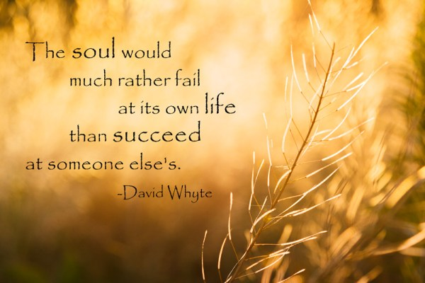 The soul would much rather fail at its own life than succeed at someone else's. -David Whyte