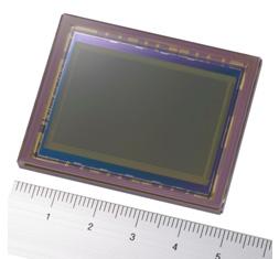 Full frame Sony sensor