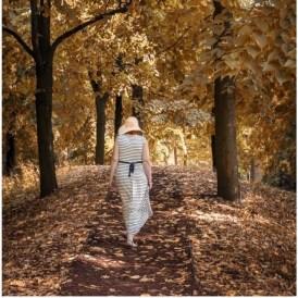Un jour d'automne