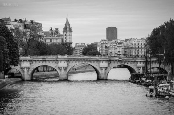 Bridges in Paris France Black and White