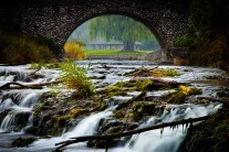 Webster Creek