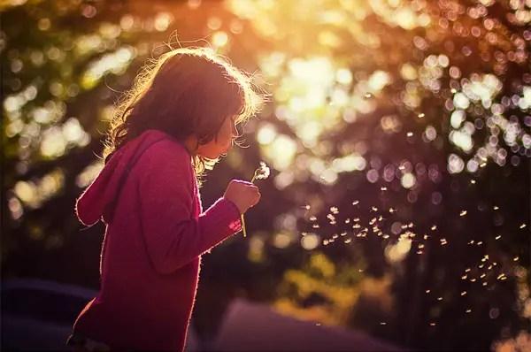 inspiring-photography-blogs