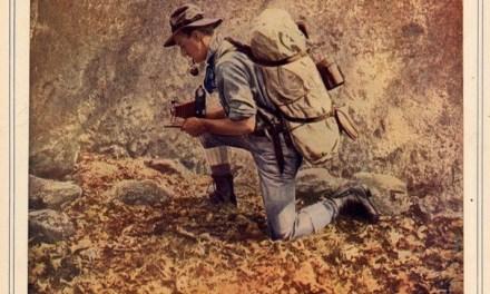 Au fond de la forêt, quelle est la différence entre un canari et un photographe ?