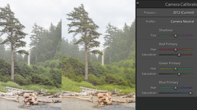 Use Lightroom's Camera Calibration for Punchy Professional Looking Color
