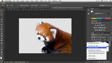 Photoshop Layer Masks: Applying a Layer Mask