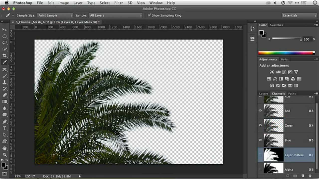 Photoshop Layer Masks: Using Channels
