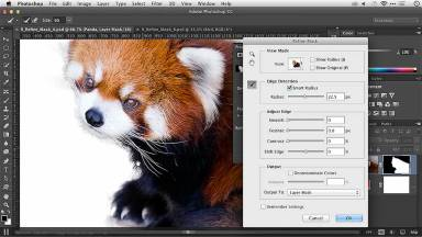 Photoshop Layer Masks: Refine Mask