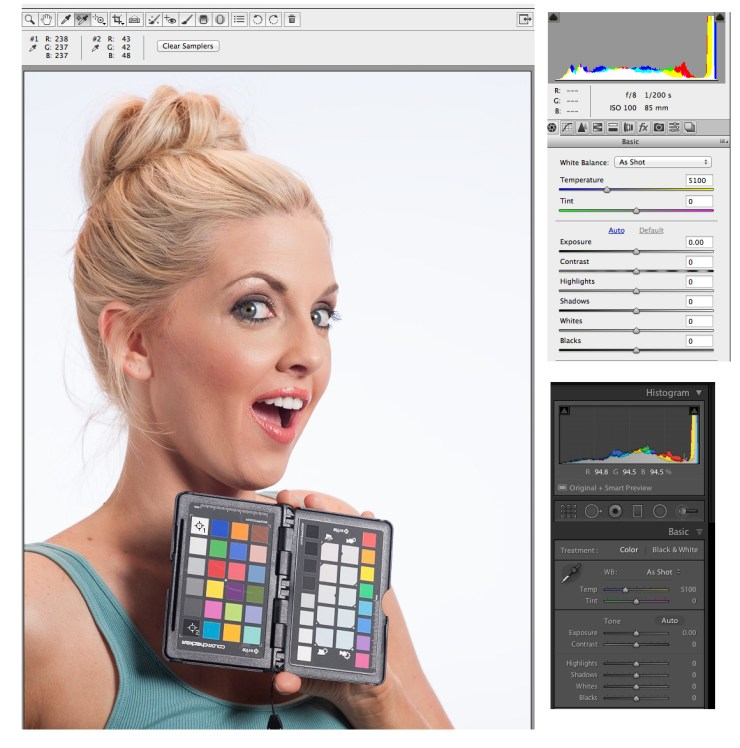 Angling the ColorChecker toward the light source makes for a more accurate reading.