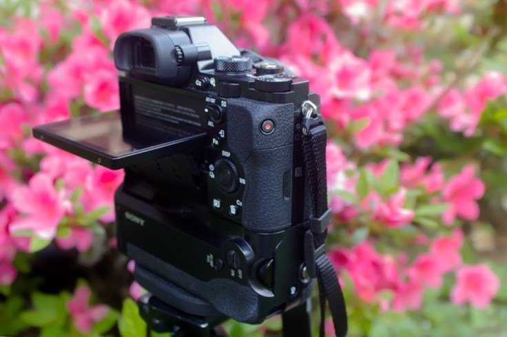 Sony a7R Tilt-screen & Rear Control
