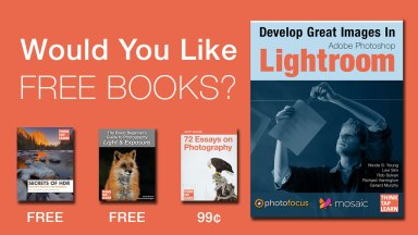 Would You Like Free iBooks?
