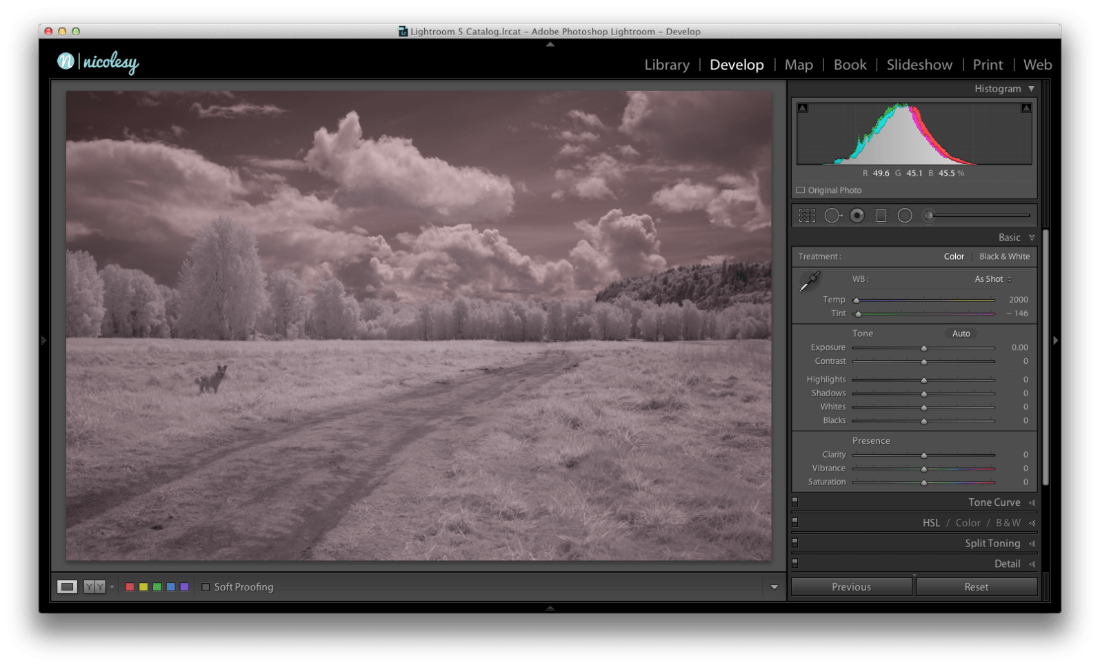 1. I open the image I want to work on in Lightroom. The image looks washed out and muddy, so it definitely needs some work.