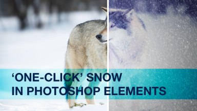 Creating One-Click Snow in Photoshop Elements