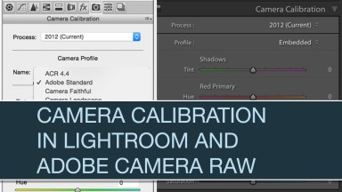Camera Calibration in Lightroom and Adobe Camera Raw