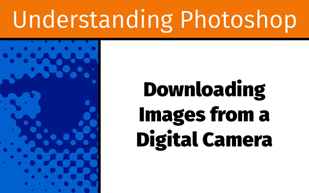 Downloading images from a digital camera