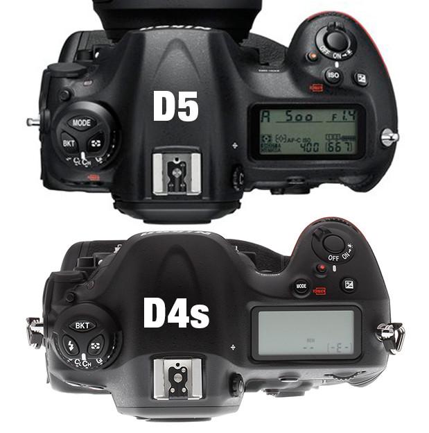 D4sD5-top