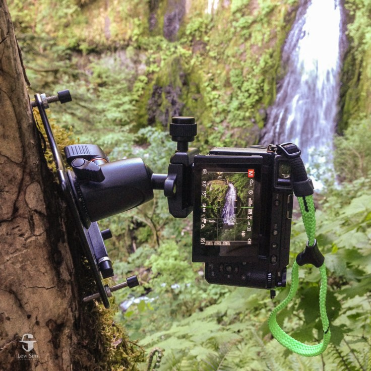 "Platypod Max's 1/4"" 20 threaded legs fit perfectly in the termite holes in the tree at Upper McCord Creek Falls in the Columbia River Gorge."