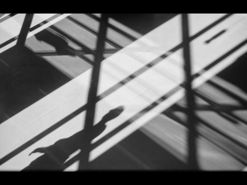 shadowy-by-paul-henni
