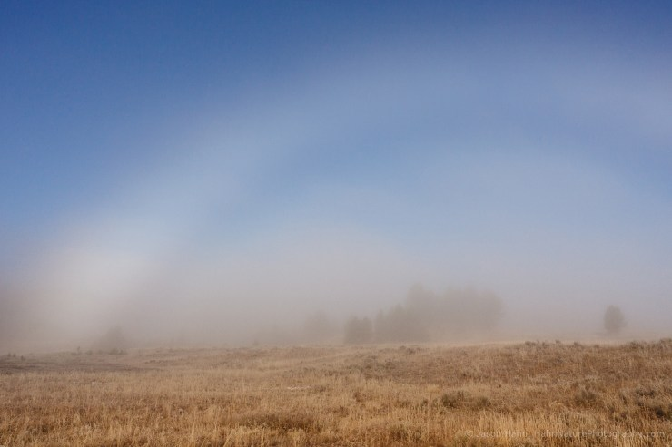 Icy Fogbow