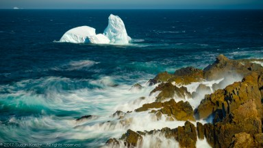 "Newfoundland: A ""Bucket List"" Destination"