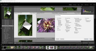 Syncing Image settings in Lightroom.