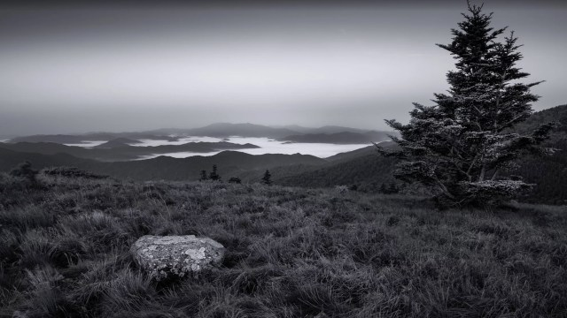 Photofocus Photographer of the Day Jim Denham Fog in the Valley