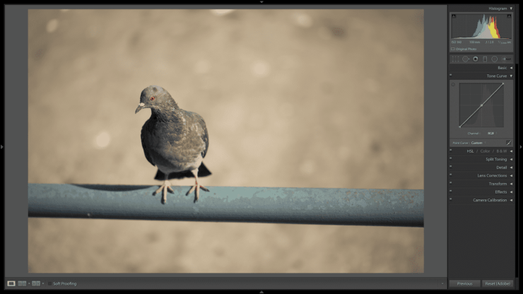 Example photo showing Curves in Lightroom