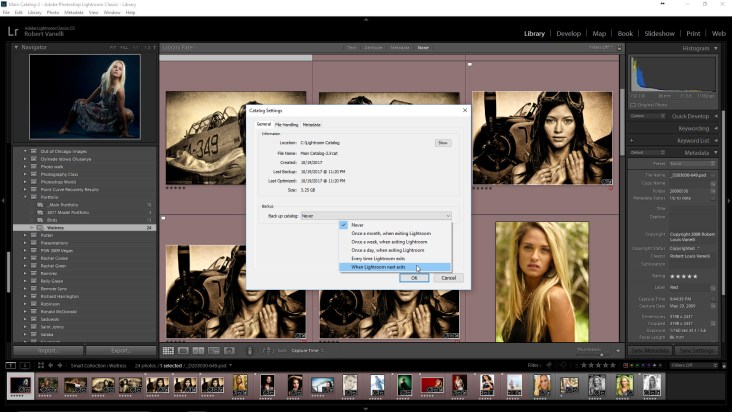 From the Backup catalog dropdown select When Lightroom next exit