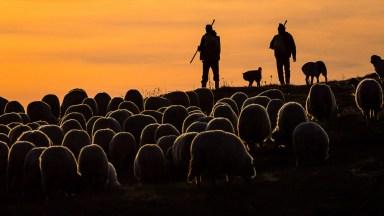 Photographer of the Day: Ryszard Domański