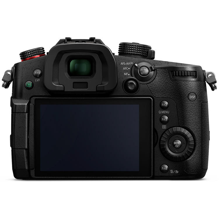 The GH5's have more than 20 programmable buttons.