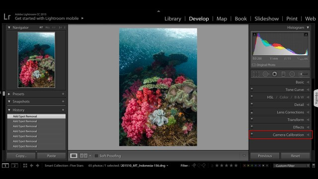 Adobe LR Camera Calibration