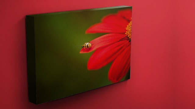 Printing: Creating a Frameless Gallery Wrap with On1 Photo Raw