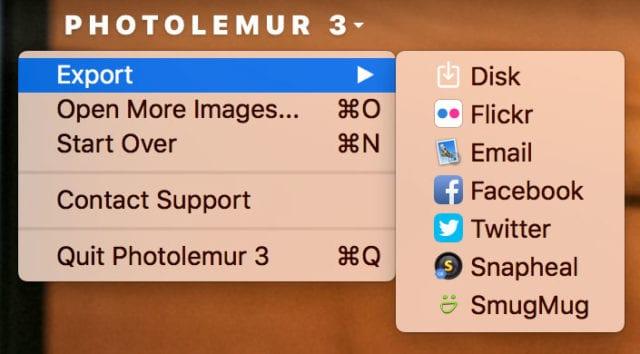 Photolemur export options