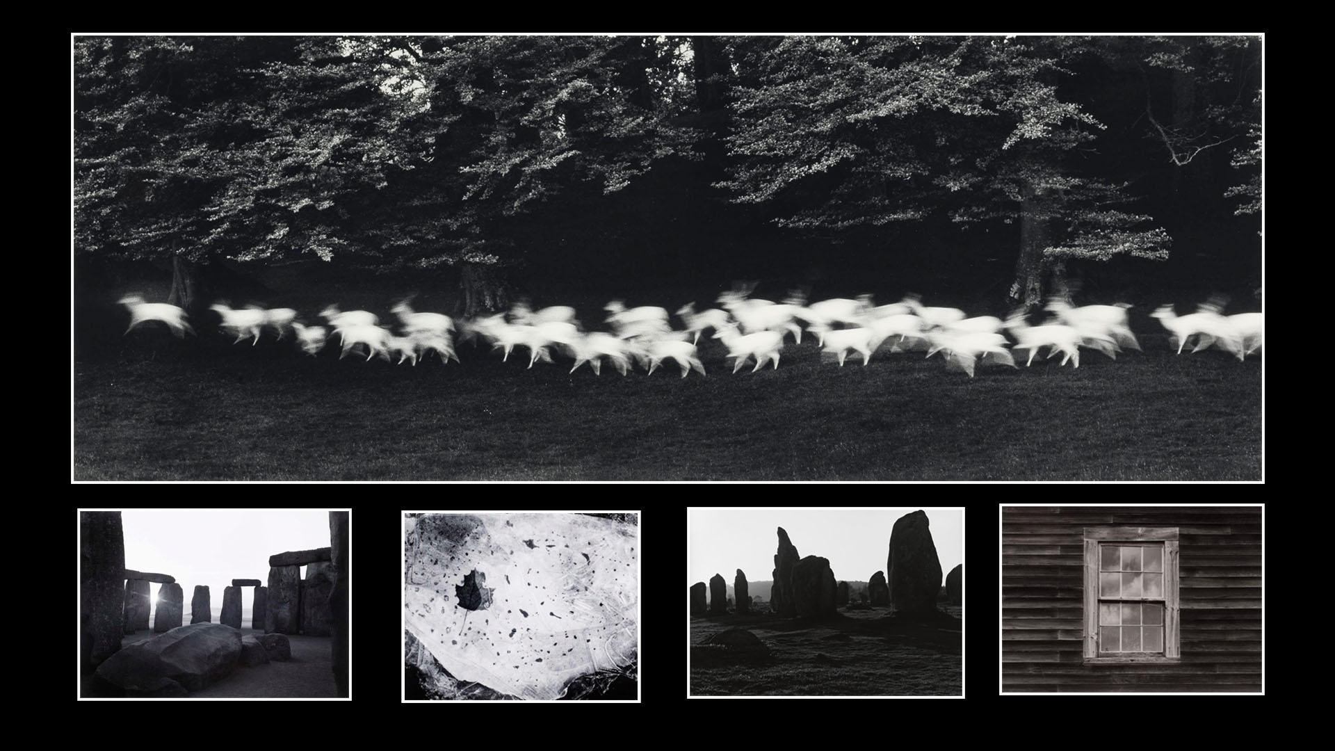 Photographs by Paul Caponigro