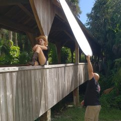 Balancing natural light with flash