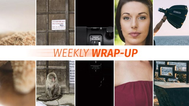 Weekly Wrap-Up: November 4-10, 2018
