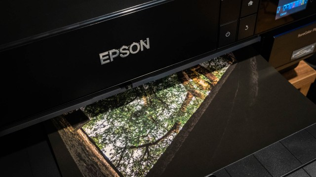 Epson SureColor P800 provides superb color, sharpness in a small footprint