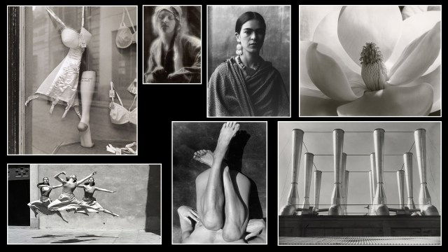 On Photography: Imogen Cunningham, 1883-1976