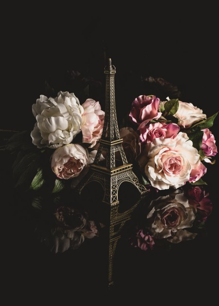 Paris a still life photo by Julie Powell