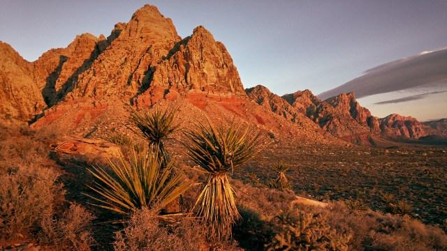 Photoshoot at Black Velvet Canyon with Photofocus