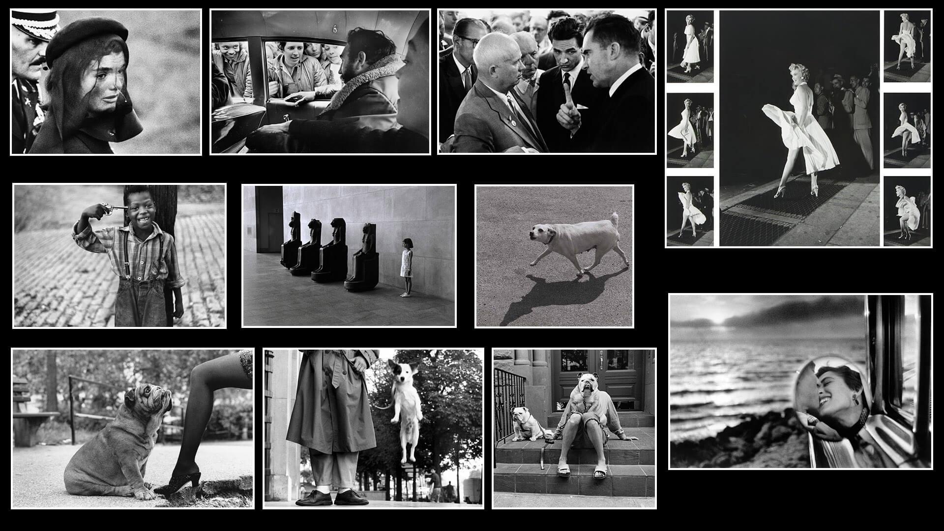 On Photography: The photography of Elliott Erwitt.