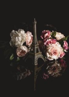 Julie Powell_flowers-3
