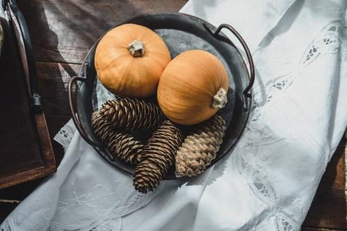 Julie Powell_NL Pumpkins-06737