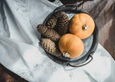 Julie Powell_NL Pumpkins-06740